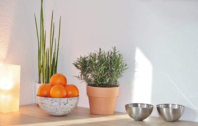 Interiér naaranžované ovocie