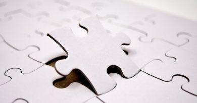 3D drevené puzzle