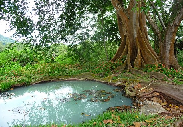 žumpa - odvod odpadových vôd